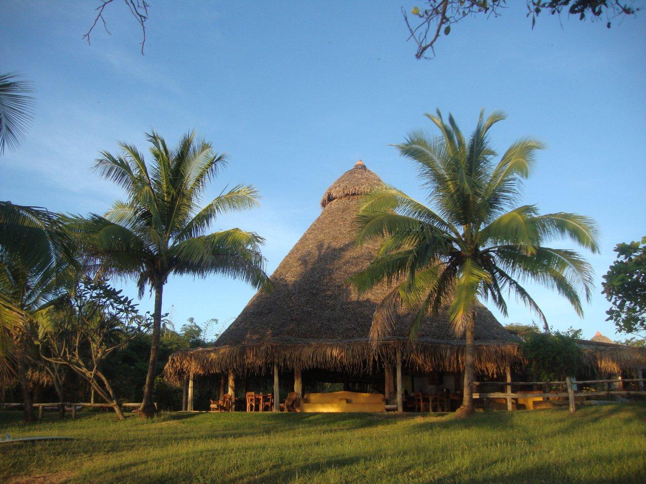 thatched roof palapa Hotel Playa Negra